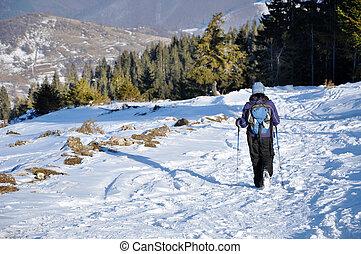 mujer, viajando arduamente, en las montañas, en, invierno
