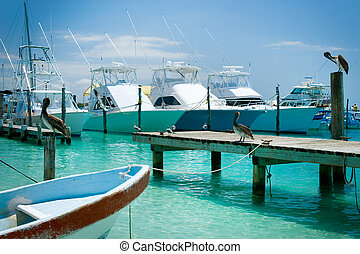 mujeres, mexique, île, cancun, jetty., isla
