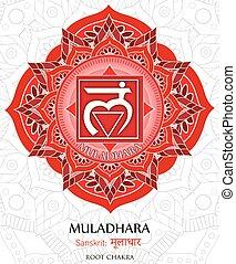 muladhara, vecteur, chakra