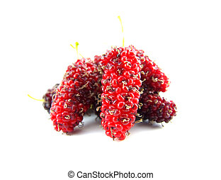 mulberries isolated on a white background