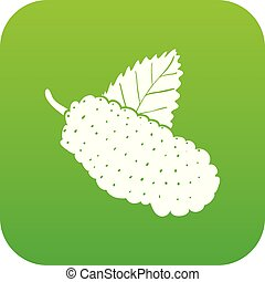 Mulberry icon green vector