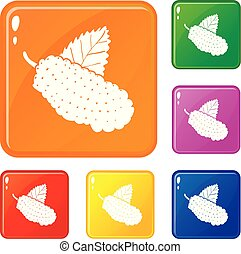 Mulberry icons set vector color