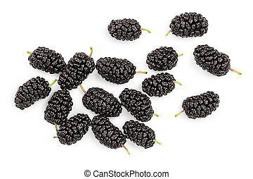 Mulberry isolated on white background. Top view. Flat lay