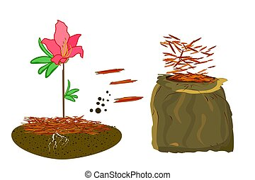 Mulch gardening concept with azalea, red mulch and bag ...