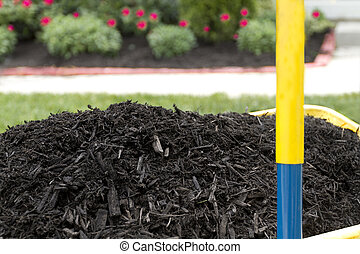 Mulch in Wheelbarrow - Mulch in wheelbarrow waiting to be...