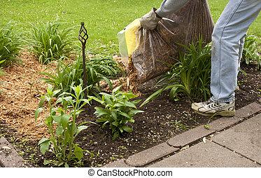 mulching a flower garden - man spreading cypress mulch in a...