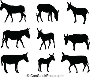 Mules and donkeys silhouettes - vector