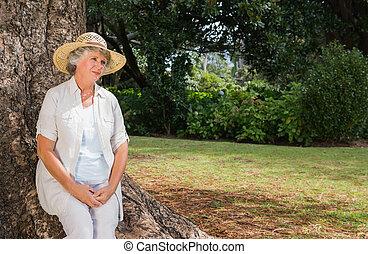 mulher, aposentado, sentando, árvore, pensativo, tronco