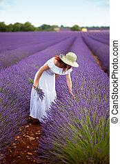 mulher bonita, em, campo, de, lavender., provence, france.
