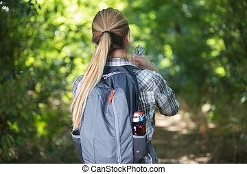 mulher bonita, hiking, em, a, floresta pinho, sozinha