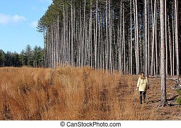 mulher caminhando, em, campo árvores