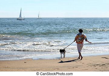 mulher, com, um, cão