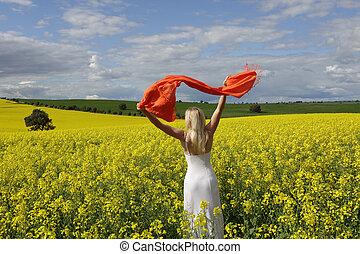 mulher feliz, flailing, echarpe, em, um, campo, de, florescendo, canola, em, primavera