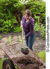mulher, fertilizando, jardim, cama, com, composto, de, carrinho de mão
