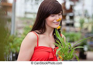 mulher, flor, cheirando