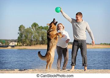 mulher grávida, e, homem, com, cão