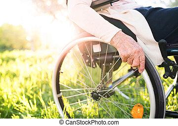 mulher idosa, em, cadeira rodas, em, primavera, nature.
