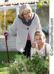 mulher idosa, em, um, jardim, com, um, jovem, ajudante