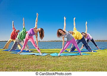 mulher, ioga, lakeside., par, prática, árvore, asana, homem