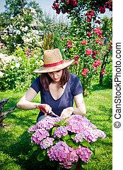 mulher, jardinagem, jovem