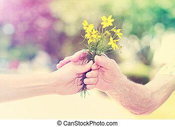 mulher, jovem, idoso, exterior, segurar floresce