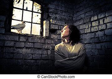 mulher, liberdade, símbolo, prisão, pombo branco, sonhos