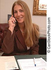 mulher negócio, 2