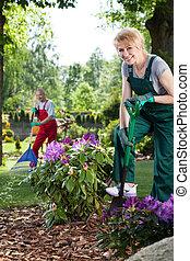 mulher, pá jardim