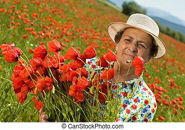 mulher sênior, ligado, papoula, campo, com, um, grupo flores