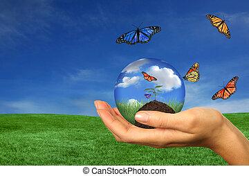 mulher, seedling, levando, segurando, terra, cuidado