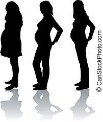 mulher, silueta, grávida
