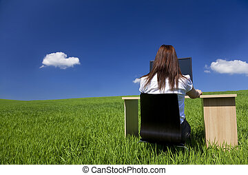 mulher, trabalhar, escrivaninha escritório, e, computador, em, campo verde