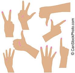 mulheres, cobrança, mãos