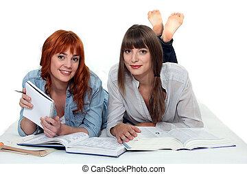 mulheres jovens, estudar, livros