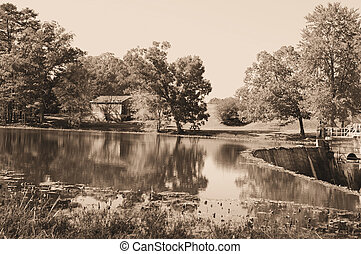 mulino, in, sepia