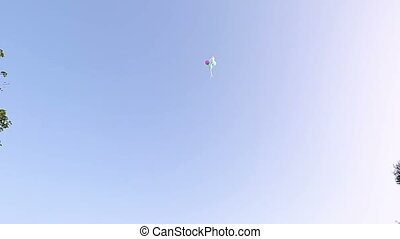 balloons on a blue sky background