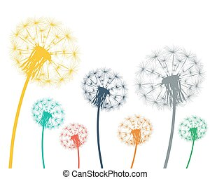 Multi-colored dandelions on a white background