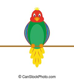 multi-colored funny parrot