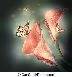 multi-colorido, lírios, e, a, borboleta, ligado, um, experiência escura