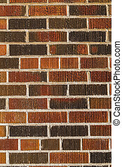 Multi coloured brick wall background