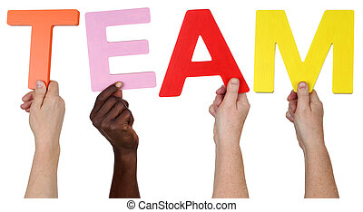 Multi ethnic group of people holding the word Team