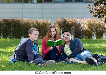 Multi-ethnic students reading book