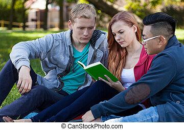 multi-ethnic, vänner, studera, till, examen