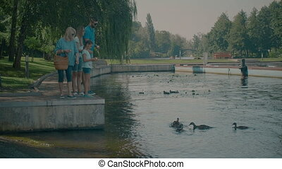 Multi generation family feeding ducks in park - Happy three...
