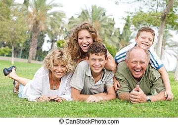 multi-generation, parque, familia , relajante