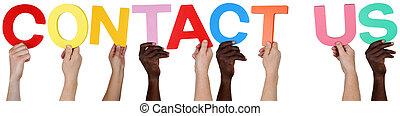 multi, grupo, gente, nosotros, contacto, tenencia, étnico,...