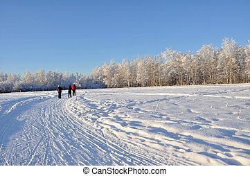 Multi-Use Recreation Trail during Alaska Winter