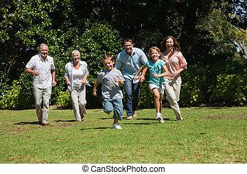 Multi, vers, famille, génération, courant, appareil photo,...