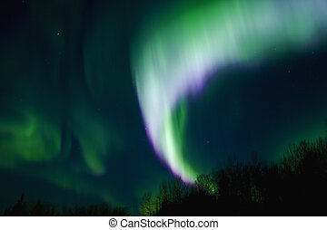 Multicolor Aurora