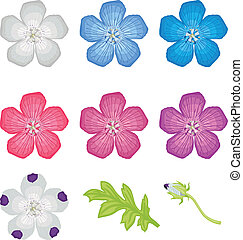 Multicolor flowers set